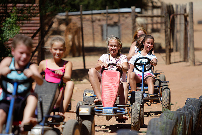 Pedal Cars at Wilgewandel Holiday Farm Oudtshoorn